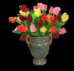 flower-vase-png-image-with-transparent-background